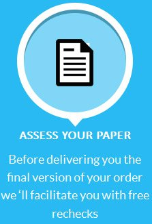 Assess your Paper
